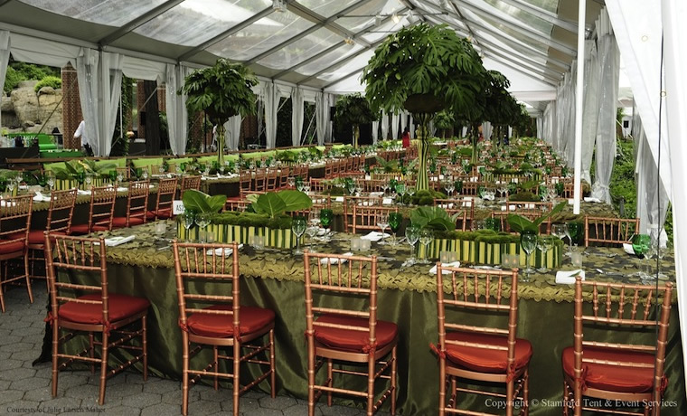 Outdoor Tent Rental