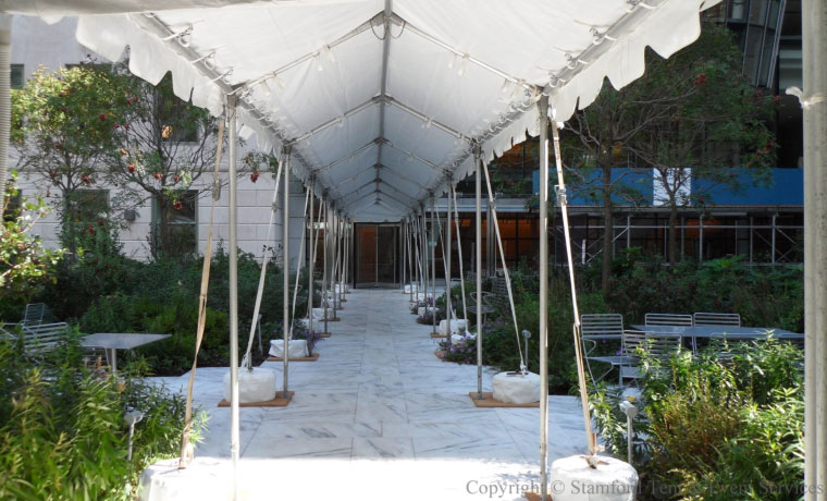 Canopy Tent Outdoors